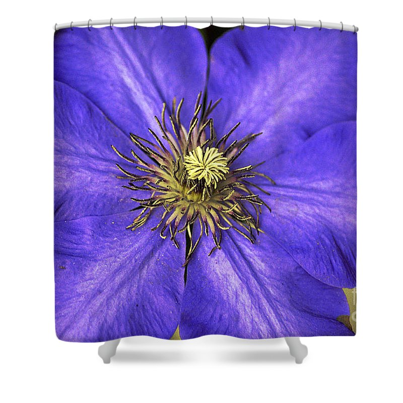 Clay Shower Curtain featuring the photograph Tenticles by Clayton Bruster