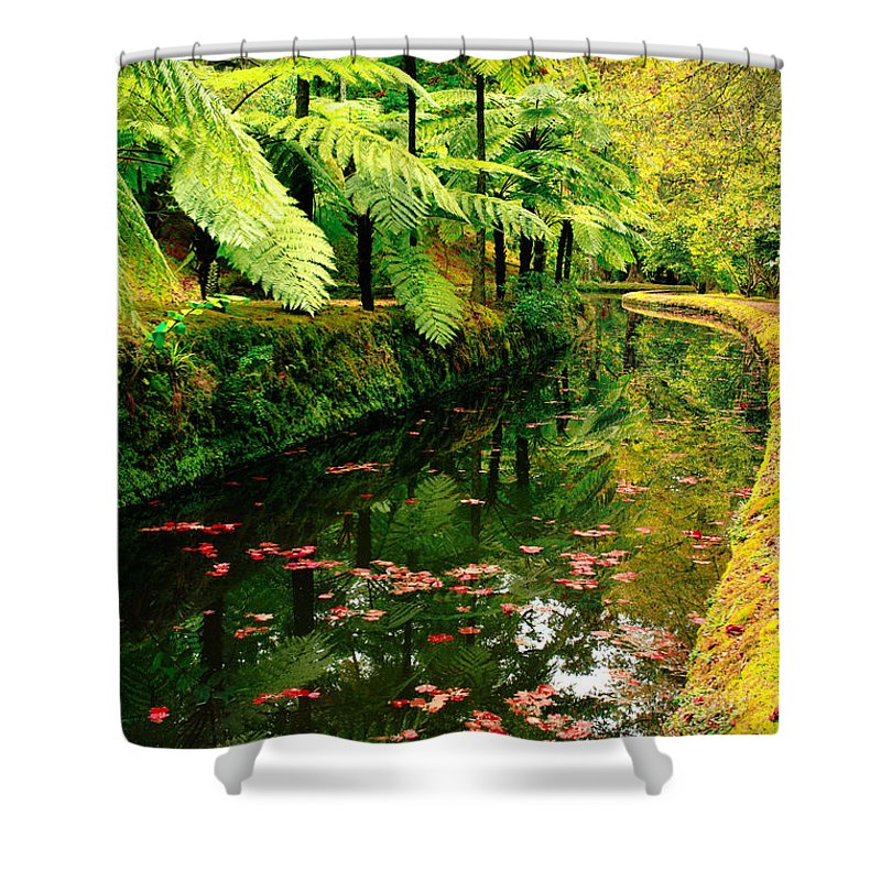 Azores Shower Curtain featuring the photograph Terra Nostra Park by Gaspar Avila