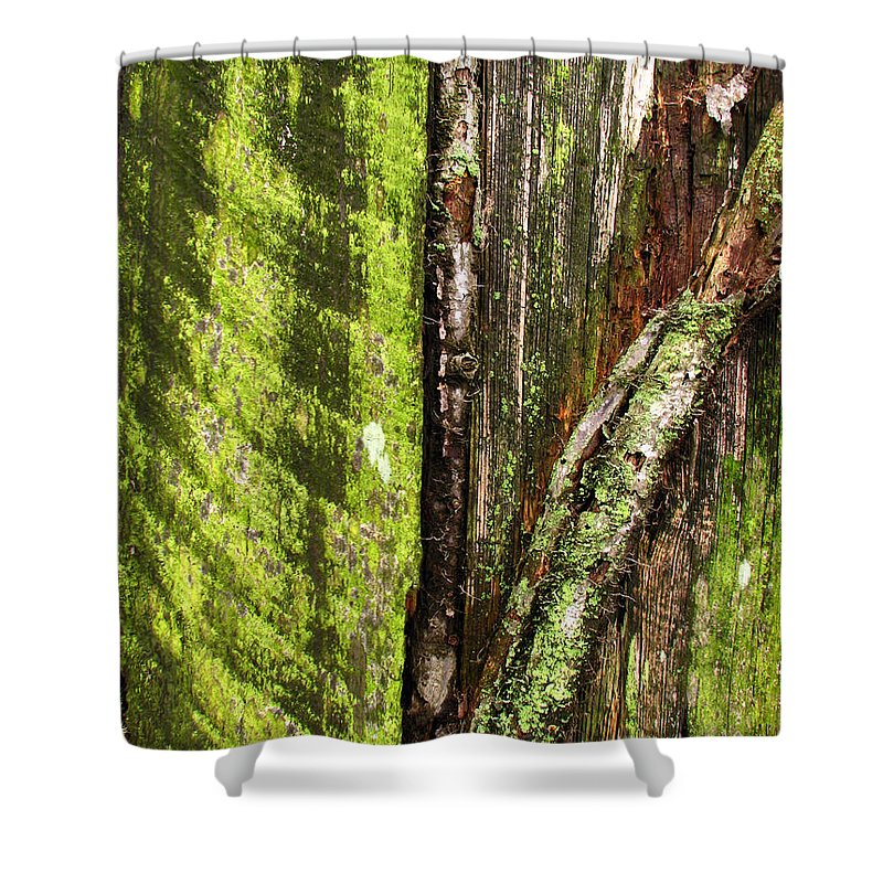 Texture Shower Curtain featuring the photograph Texture Series by Amanda Barcon