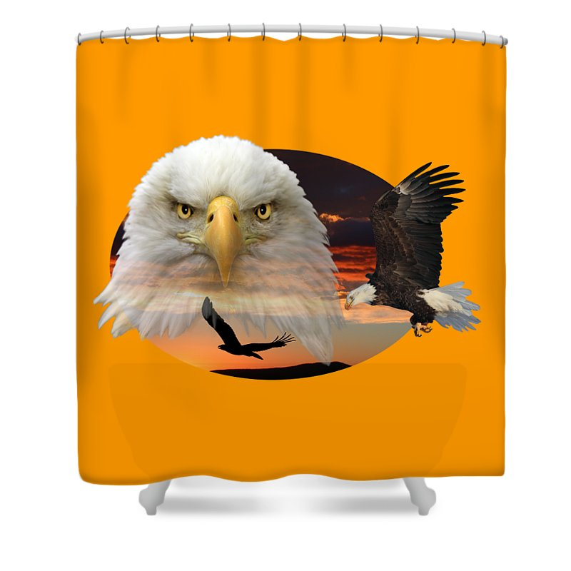 Bald Eagle Shower Curtain featuring the photograph The Bald Eagle 2 by Shane Bechler