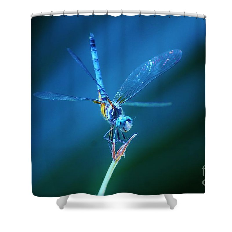 Kerisart Shower Curtain featuring the photograph The Ballerina by Keri West