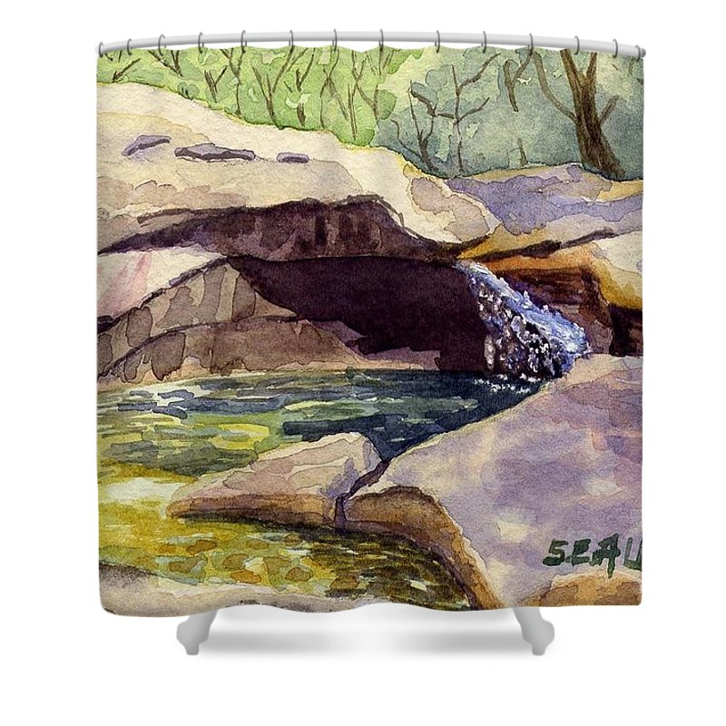 The Basin Shower Curtain featuring the painting The Basin by Sharon E Allen