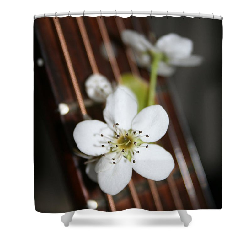 Still Life Photography Shower Curtain featuring the photograph The Beauty Of Strings by Linda Sannuti