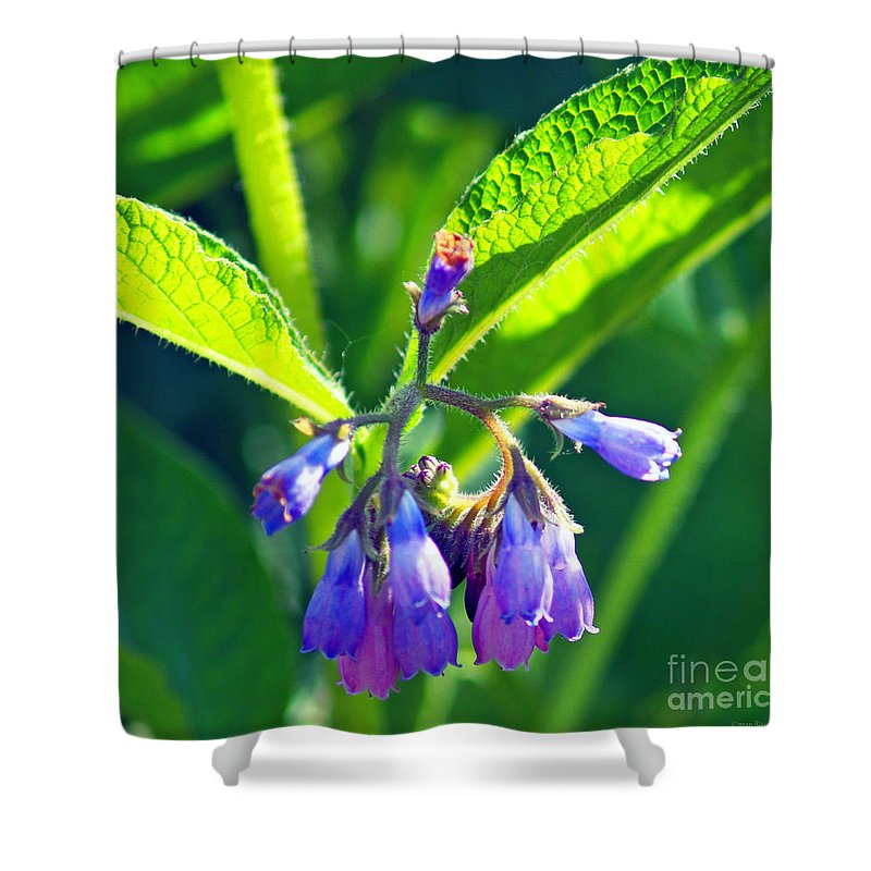 Fine Art Photography Shower Curtain featuring the photograph The Bells of Ireland by Patricia Griffin Brett