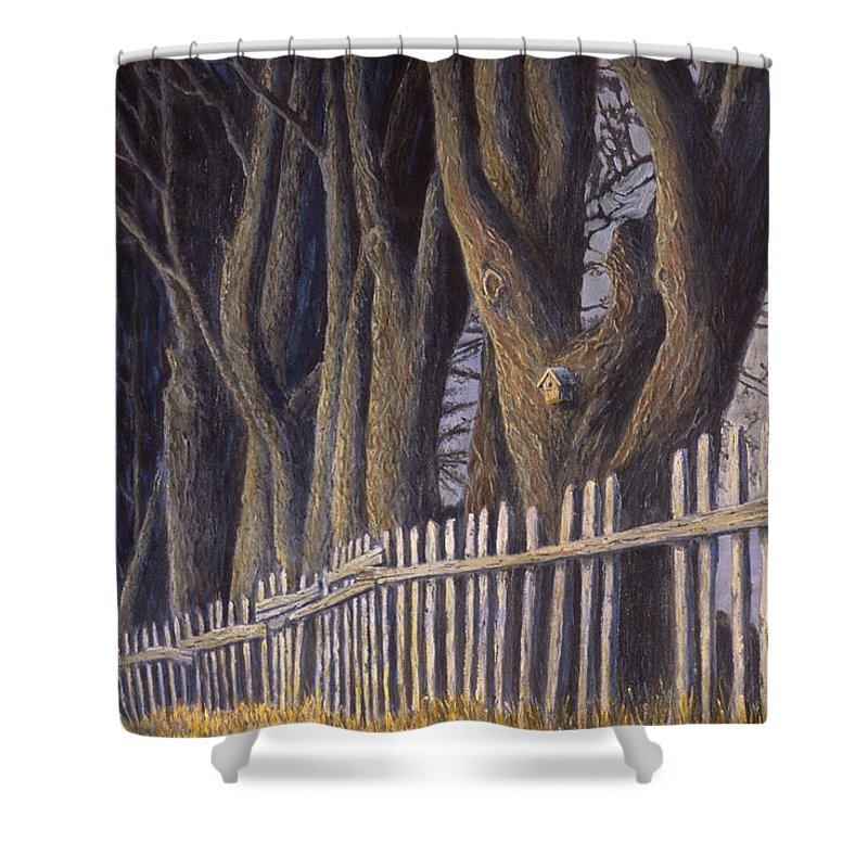 Bird House Shower Curtain featuring the painting The Bird House by Jerry McElroy