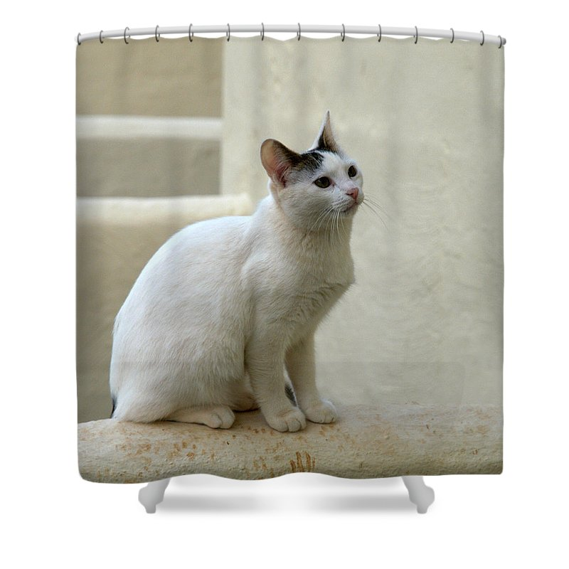 Landscape Shower Curtain featuring the photograph The Blond Nr 2 by Jouko Lehto