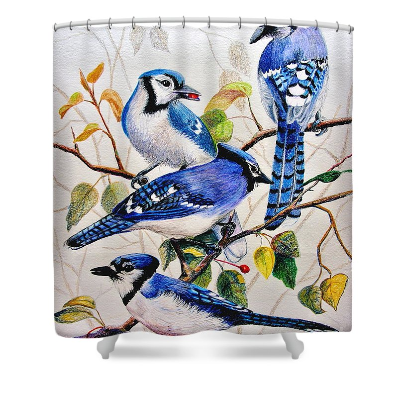Bluejays Shower Curtain featuring the drawing The Blues by Marilyn Smith