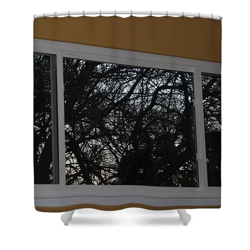 Window Shower Curtain featuring the photograph The Branch Window by Rob Hans