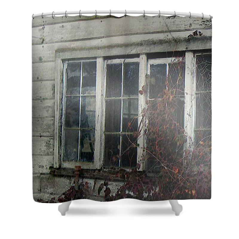 Boy Shower Curtain featuring the painting The Child At The Window by RC deWinter