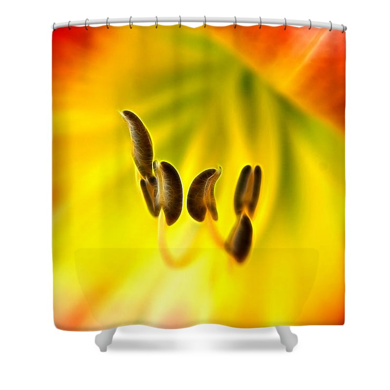 Day Lily Throat Shower Curtain featuring the photograph The Chorus by Bill Morgenstern
