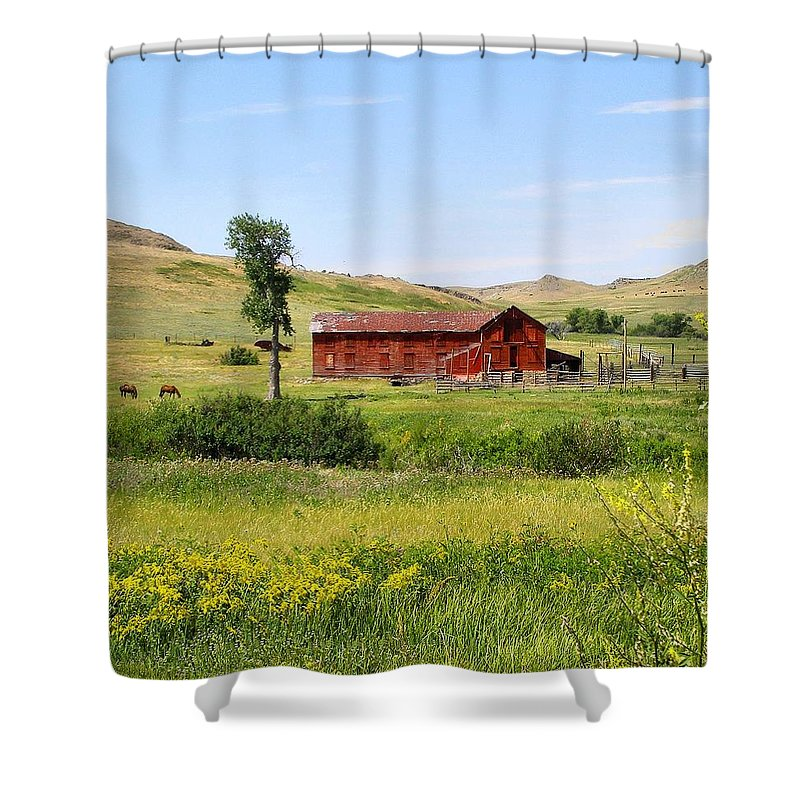 Montana Shower Curtain featuring the photograph The Color of Montana by Susan Kinney