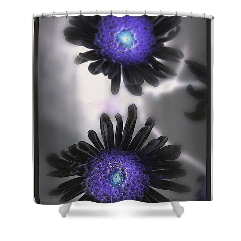 Flowers Shower Curtain featuring the photograph The Color Within by Linda Sannuti
