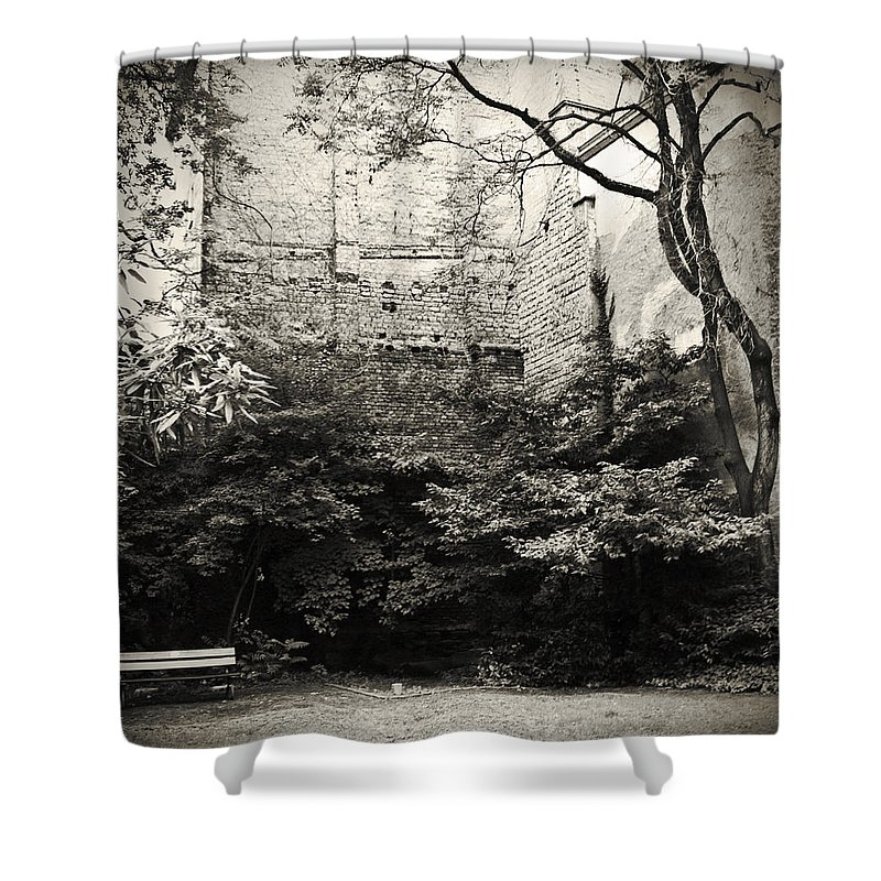 Tree Shower Curtain featuring the photograph The Courtyard by Dorit Fuhg