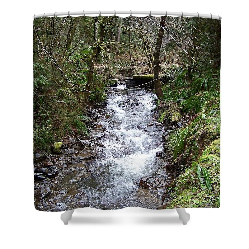 Digital Photography Shower Curtain featuring the photograph The Creek by Laurie Kidd