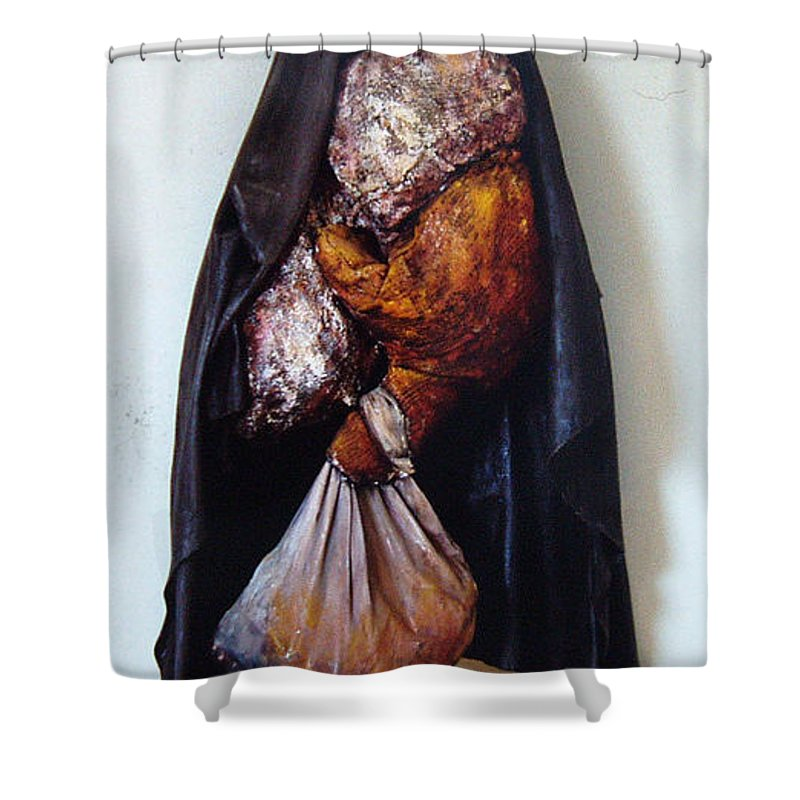 Acrylic Shower Curtain featuring the painting The Curtain by Nancy Mueller