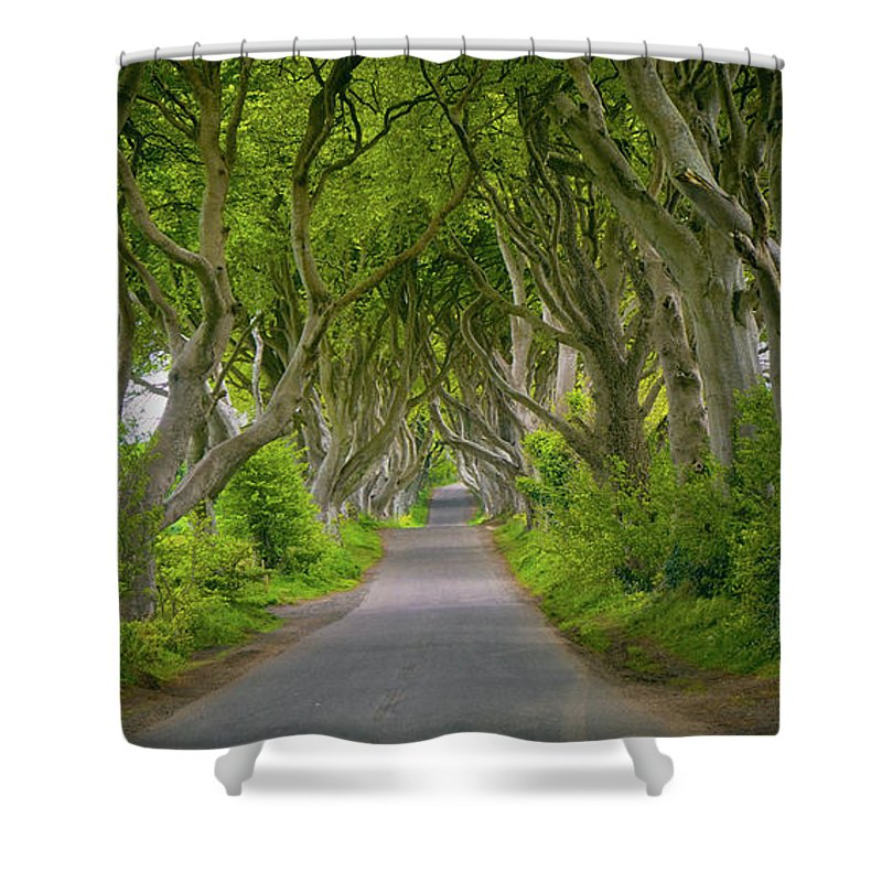 The Dark Hedges Shower Curtain featuring the photograph The Dark Hedges by Roland Hall