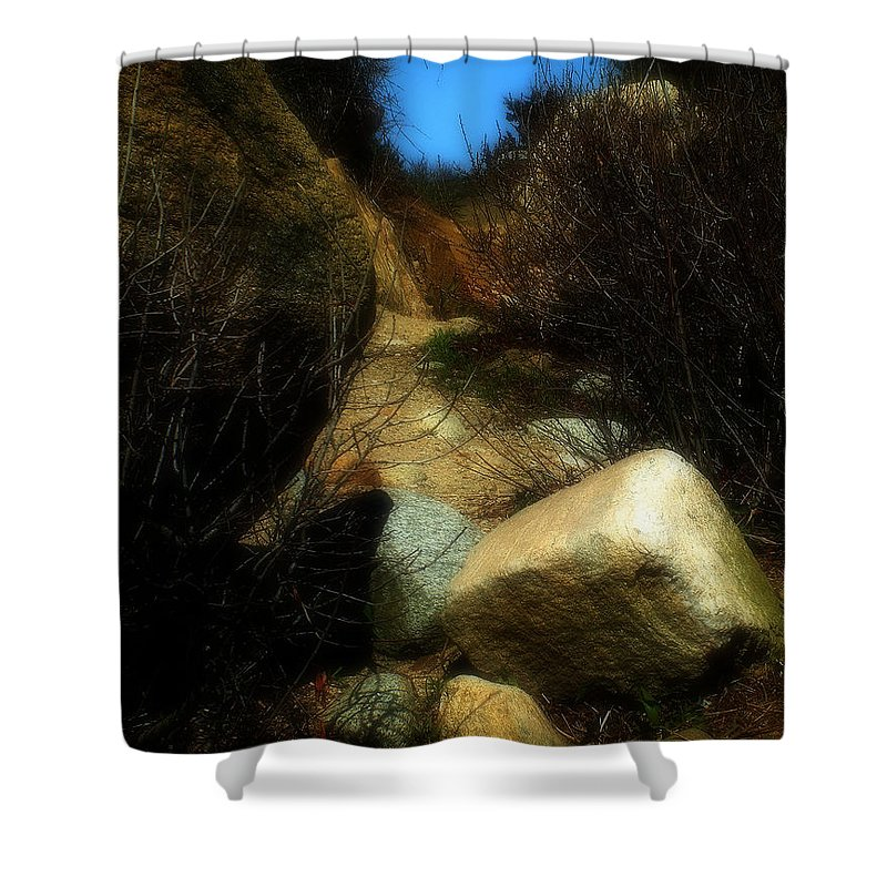 Beach Shower Curtain featuring the photograph The Delicacy Of A Summer Night by RC DeWinter