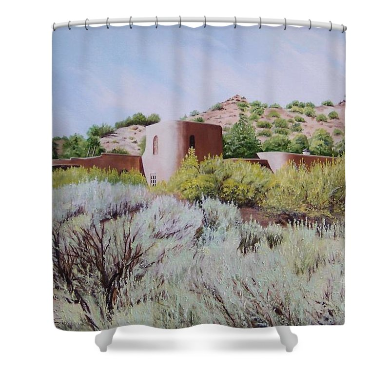 Usa Shower Curtain featuring the painting The Dixon House by Mary Rogers