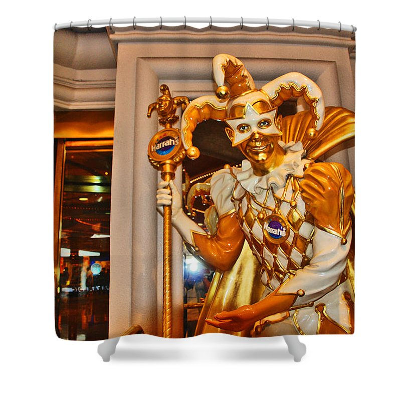 Photography Shower Curtain featuring the photograph The Fool by Susanne Van Hulst