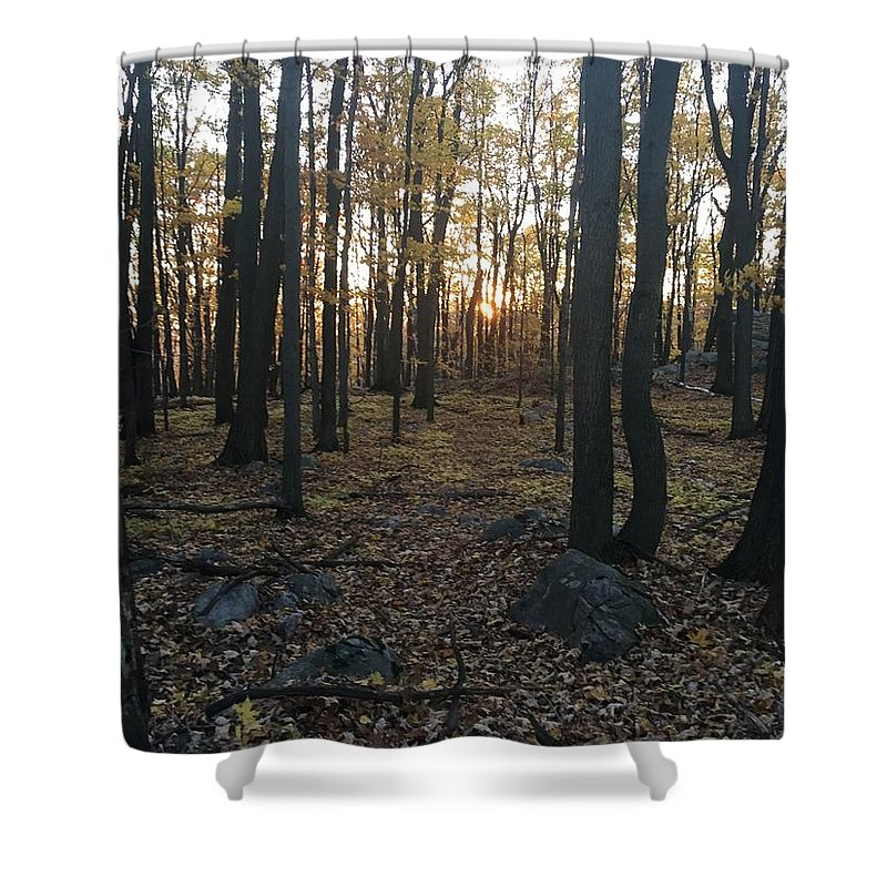 Shower Curtain featuring the photograph The Forest by Jack Ecke