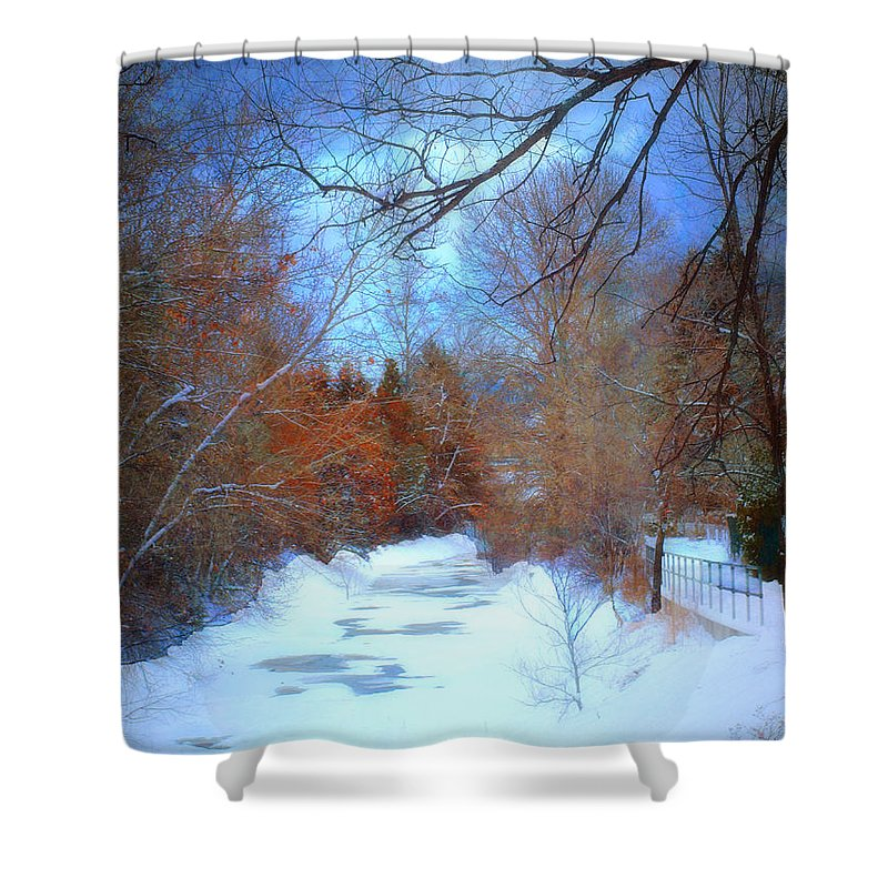 Snow Shower Curtain featuring the photograph The Frozen Creek by Tara Turner