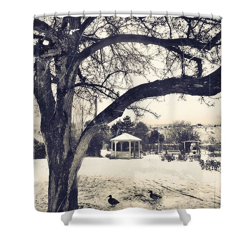 Gazebo Shower Curtain featuring the photograph The Gazebo by Tara Turner