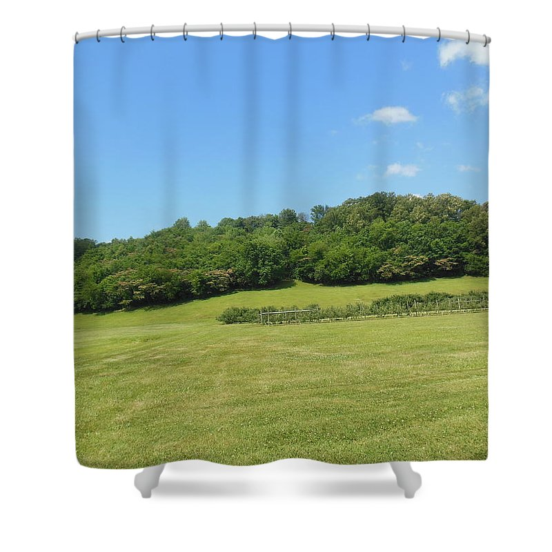 Field Shower Curtain featuring the photograph The Grass Is Always Greener by Ali Baucom
