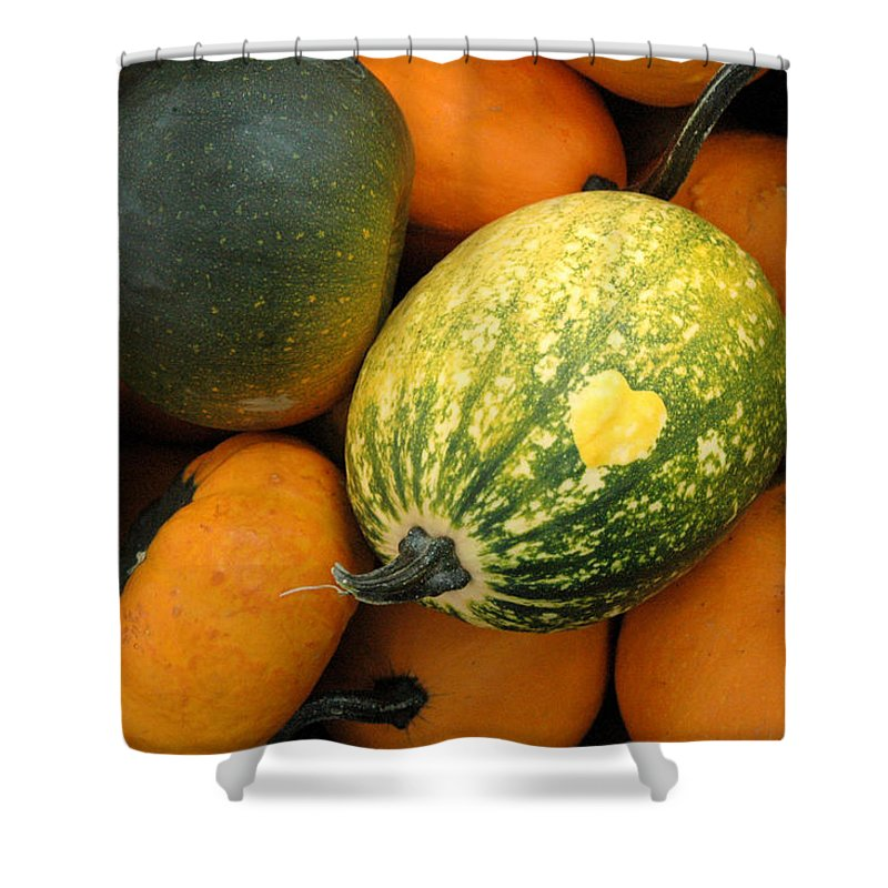 Heart Shower Curtain featuring the photograph The Heart Finds It's Way Everywhere by Trish Hale