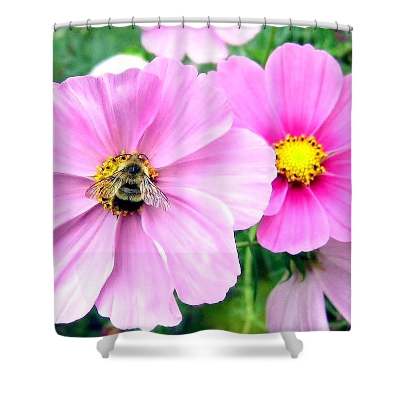 Bee Shower Curtain featuring the photograph The Honeymaker by Will Borden