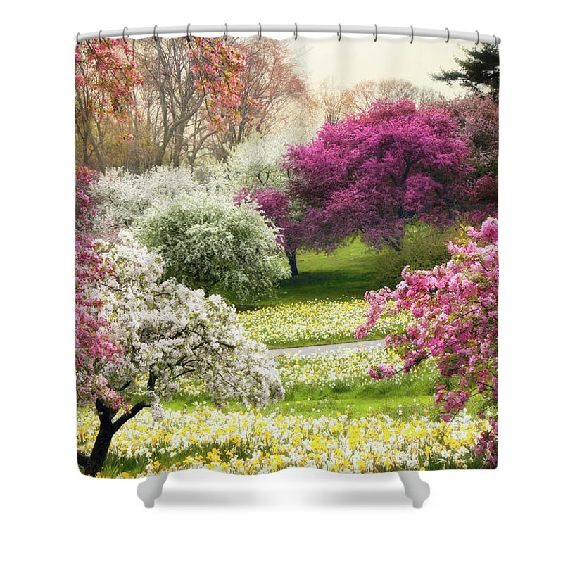 Spring Shower Curtain featuring the photograph The Joy Of Spring by Jessica Jenney