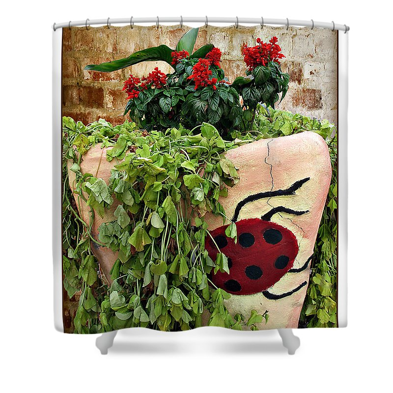 Ladybug Shower Curtain featuring the photograph the Ladybug by Joan Minchak