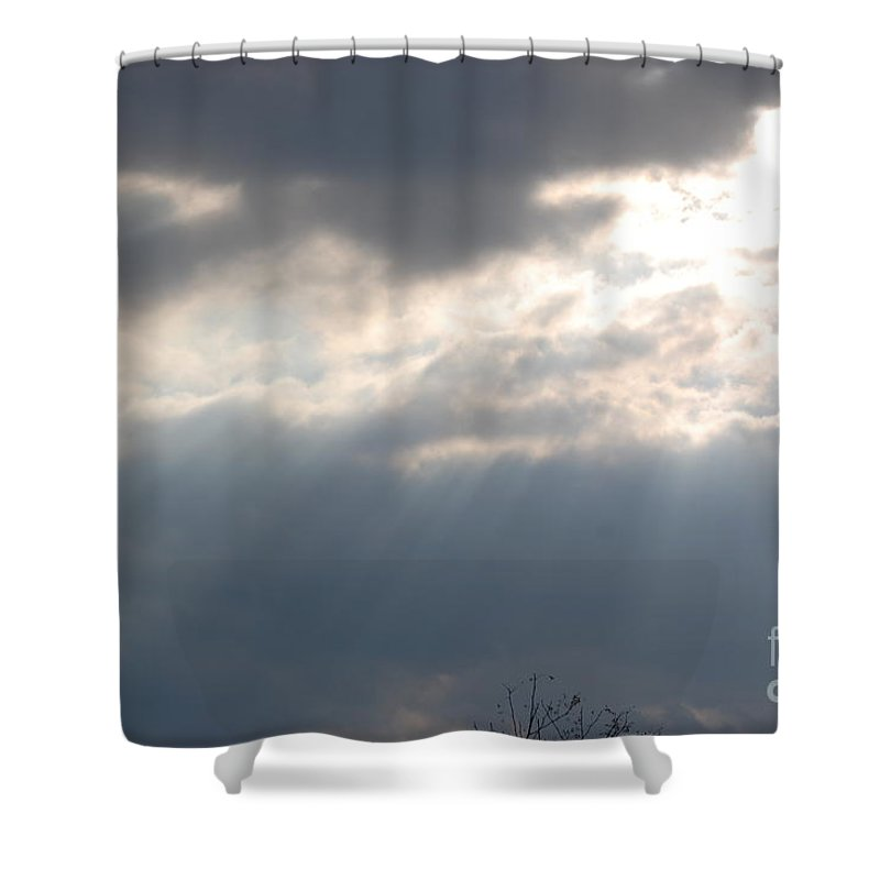 Sunshine Shower Curtain featuring the photograph The Light by Donna Bentley