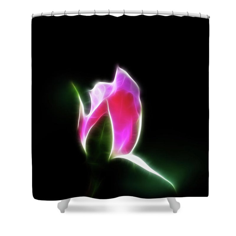 Rose Shower Curtain featuring the photograph The Light Of Heaven Shining Down by Lisa Stanley