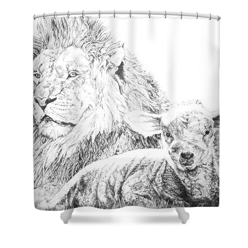 Lion Shower Curtain featuring the drawing The Lion And The Lamb by Bryan Bustard