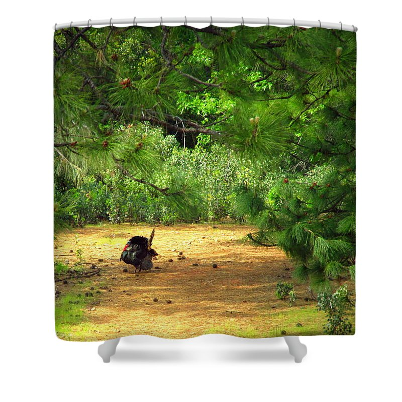 Turkey Shower Curtain featuring the photograph The Lone Survivor by Joyce Dickens