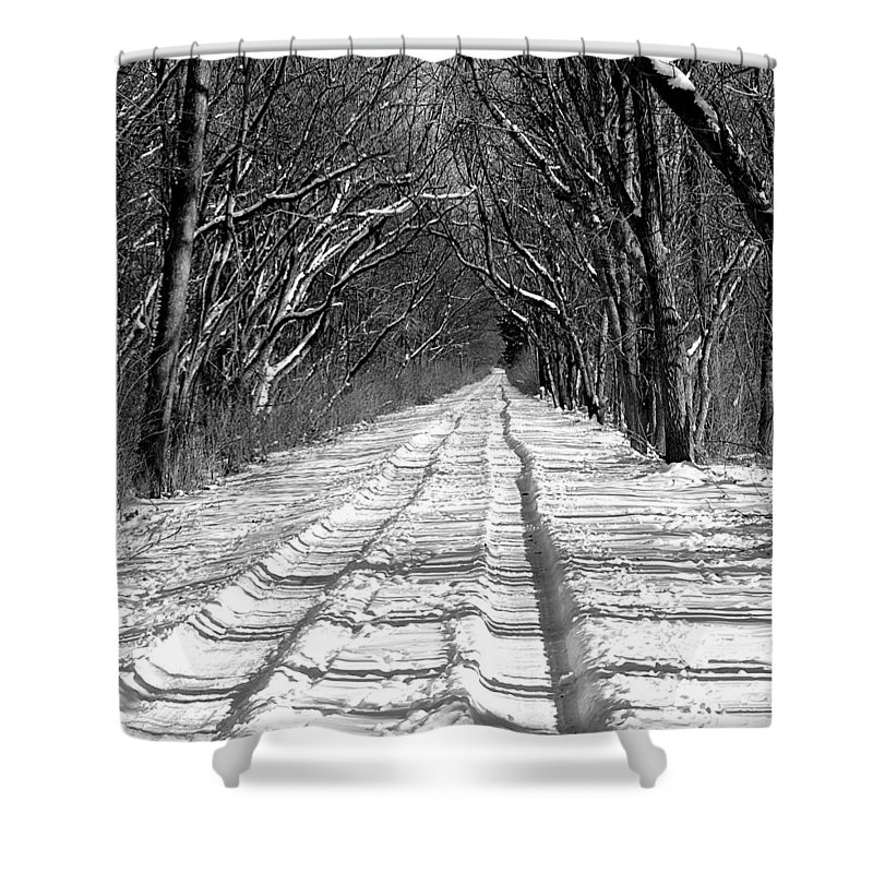 Shower Curtain featuring the photograph The Long Winter Walk by Jenny Gandert