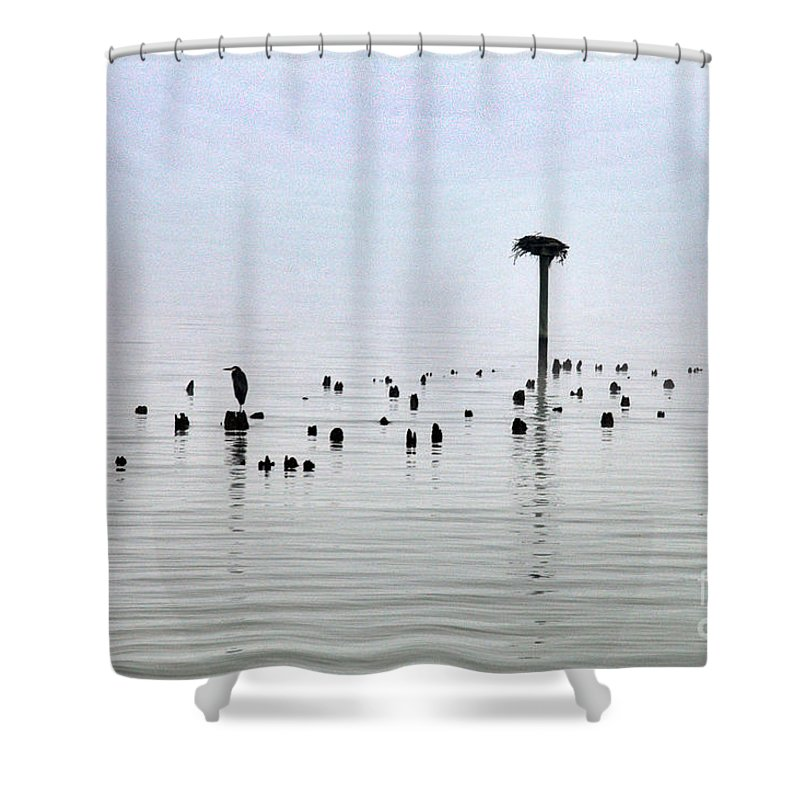 Clay Shower Curtain featuring the photograph The Loon Guard by Clayton Bruster