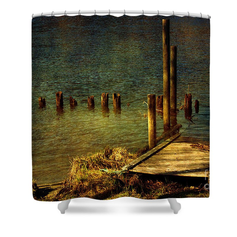 Festblues Shower Curtain featuring the photograph The Magic Hour.. by Nina Stavlund