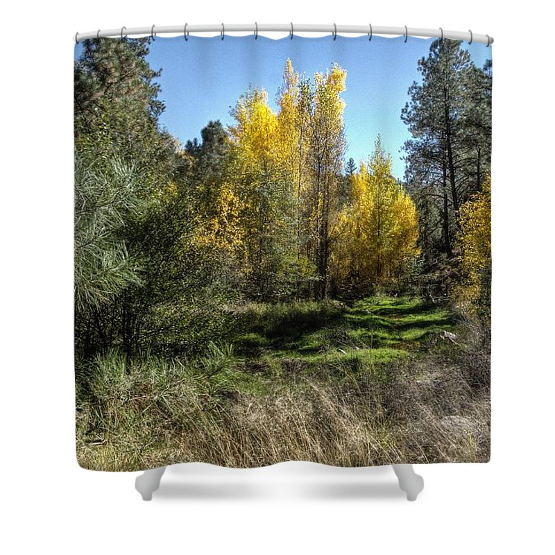 Nature Trees Landscape Outdoors Grass Weeds Rocks Color Gold Red Green Blue Sky Beauty Fall Season Lower Lynx Creek Prescott Northern Arizona. Shower Curtain featuring the photograph The Magic Of Fall by Thomas Todd