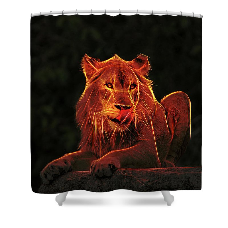Mighty Lion Sitting High On A Ledge Licking His Chops As He Looks For His Next Meal. Shower Curtain featuring the photograph The Mighty Lion by Elaine Walsh