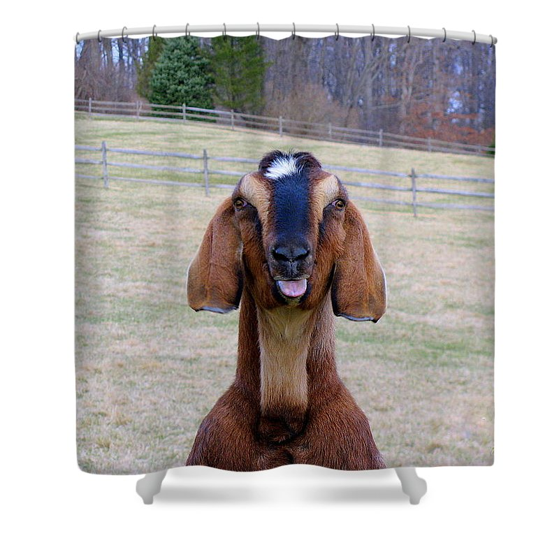 Animals Shower Curtain featuring the photograph The Name Is Billy... by Deborah Crew-Johnson