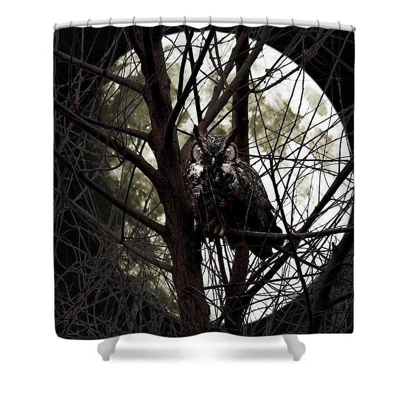 Animal Shower Curtain featuring the photograph The Night Owl And Harvest Moon by Wingsdomain Art and Photography