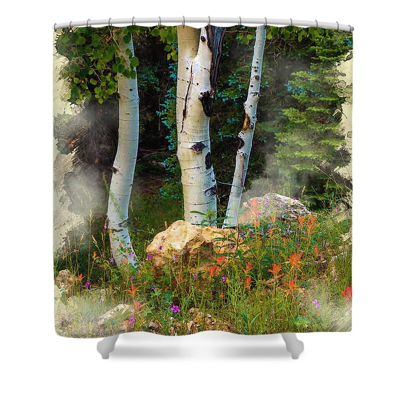 Decoration Shower Curtain featuring the digital art The North Rim Forest by Don Kuing