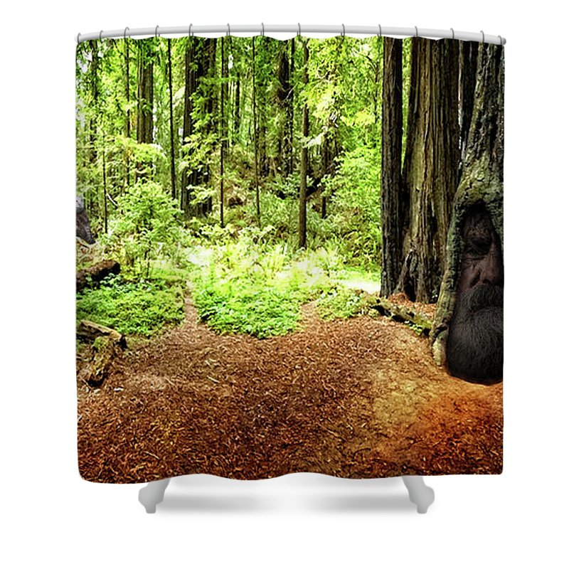 Redwood Shower Curtain featuring the photograph The Old Man In The Forest by Mike Braun