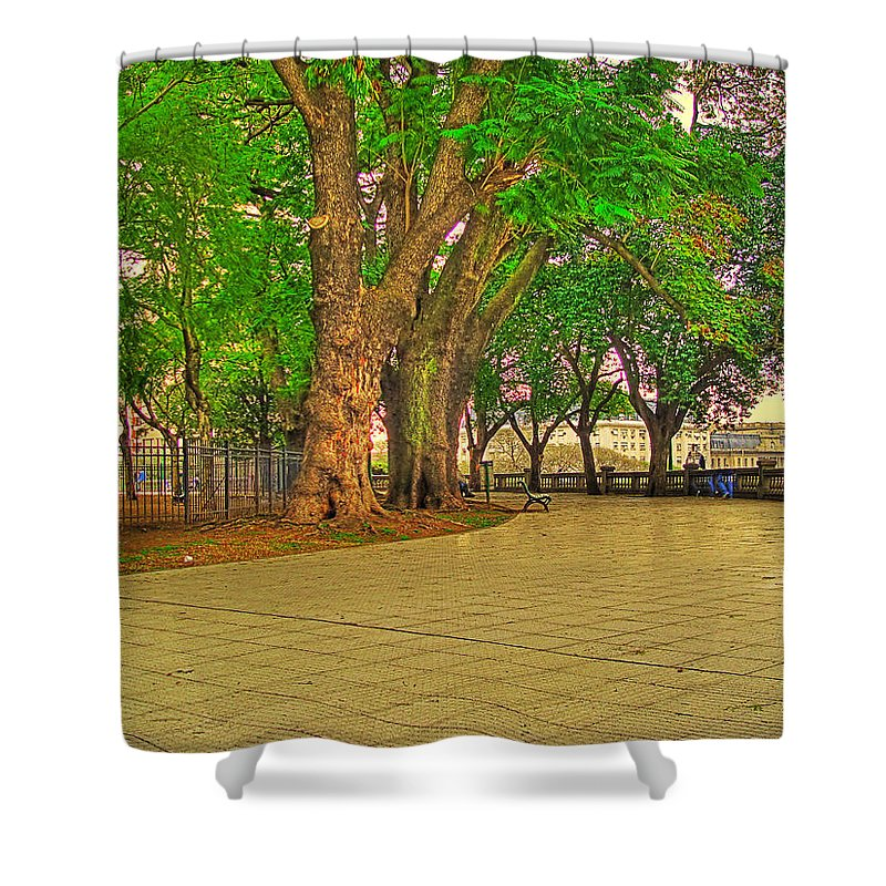 Trees Shower Curtain featuring the photograph The Park by Francisco Colon