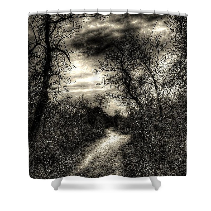 New York Shower Curtain featuring the photograph The Path Seldom Taken by Jeff Watts