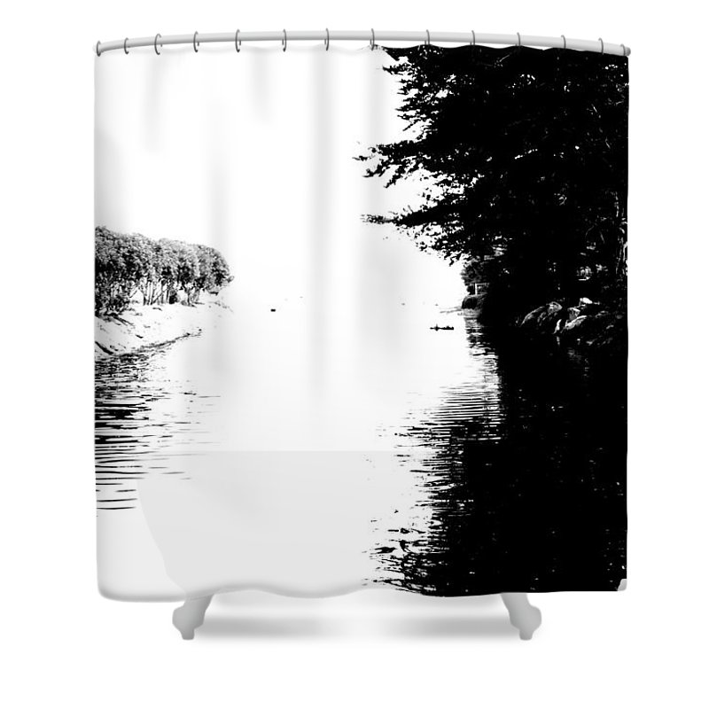 Black And White Shower Curtain featuring the photograph The Path by Shannon Nickerson