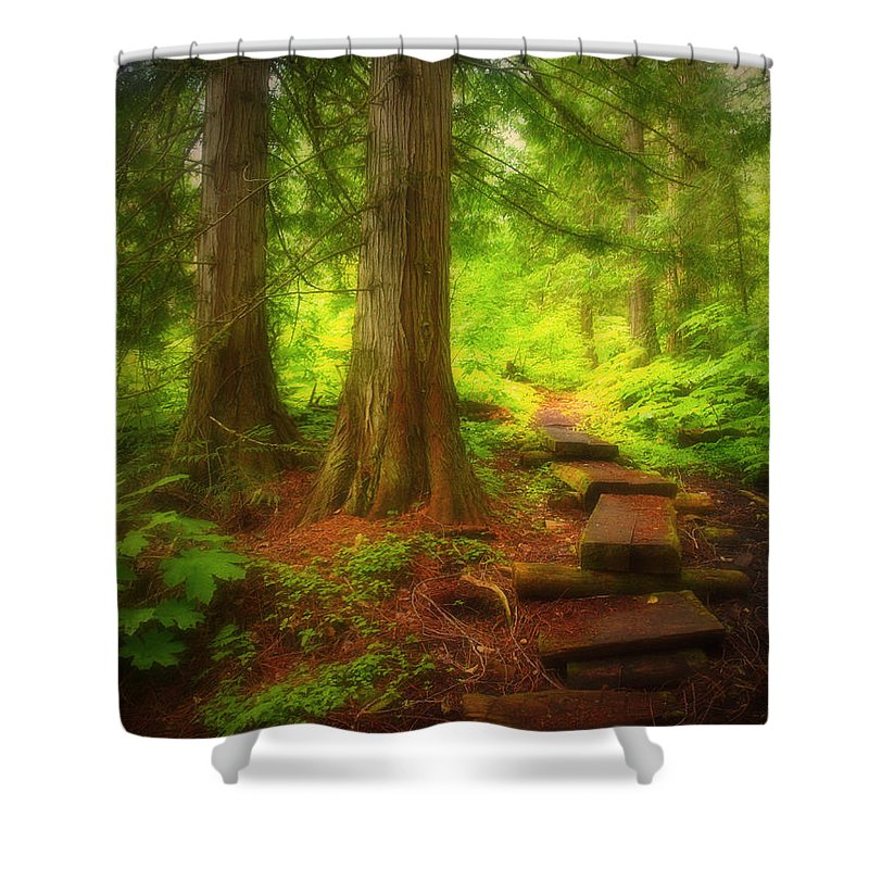 Forest Shower Curtain featuring the photograph The Path Through The Forest by Tara Turner