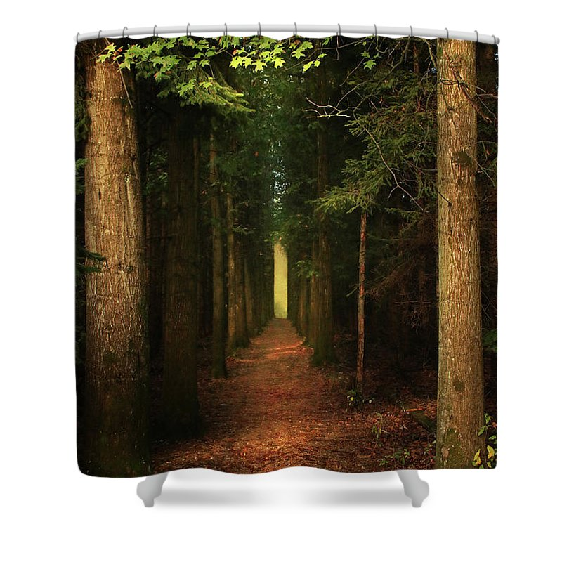 Shower Curtain featuring the photograph The Pathway by Rob Blair