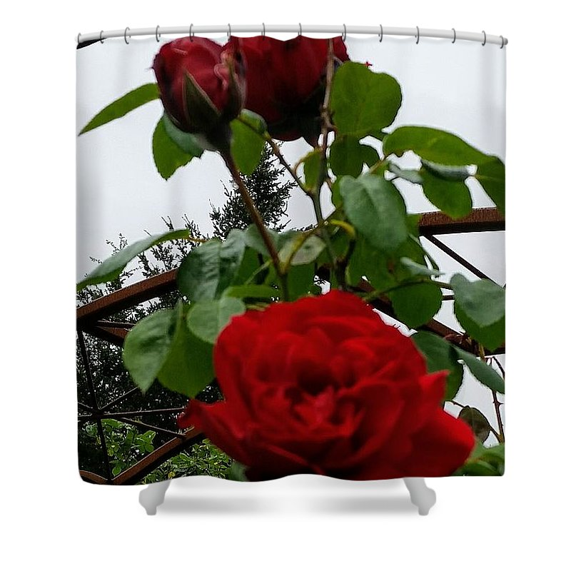 Botanical Flower's Nature Shower Curtain featuring the photograph The peaceful place 7 by Valerie Josi